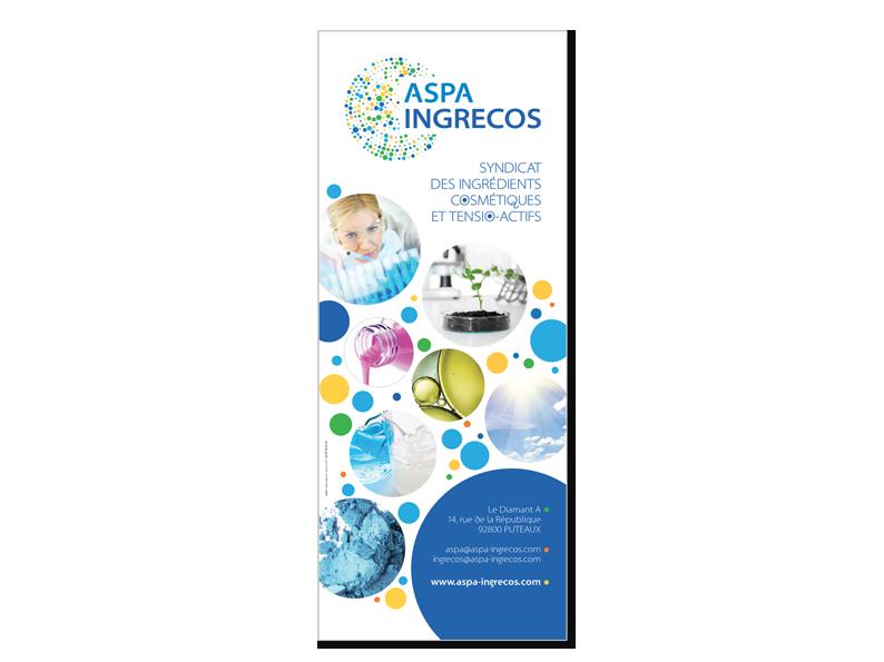 ASPA-INGRECOS-kake-OUV
